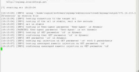 Testing SQL Injections with Sqlmap